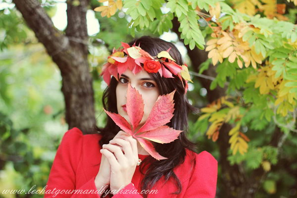 DIY Fall Crown with Leaves and Flowers for Kids and Beauty.