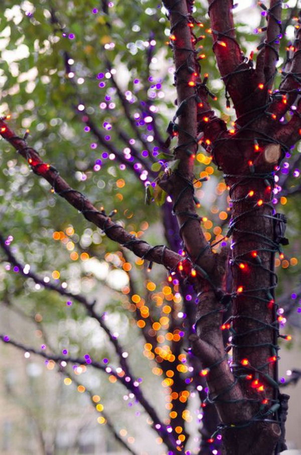 It's a simple but great way to use orange and purple LED mini lights to make your house even spookier at Halloween!