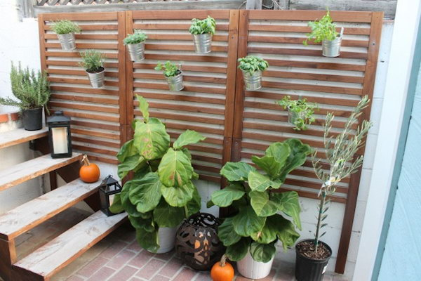 Vertical Patio Garden.