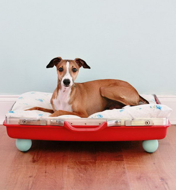 DIY Suitcase Pet Bed.
