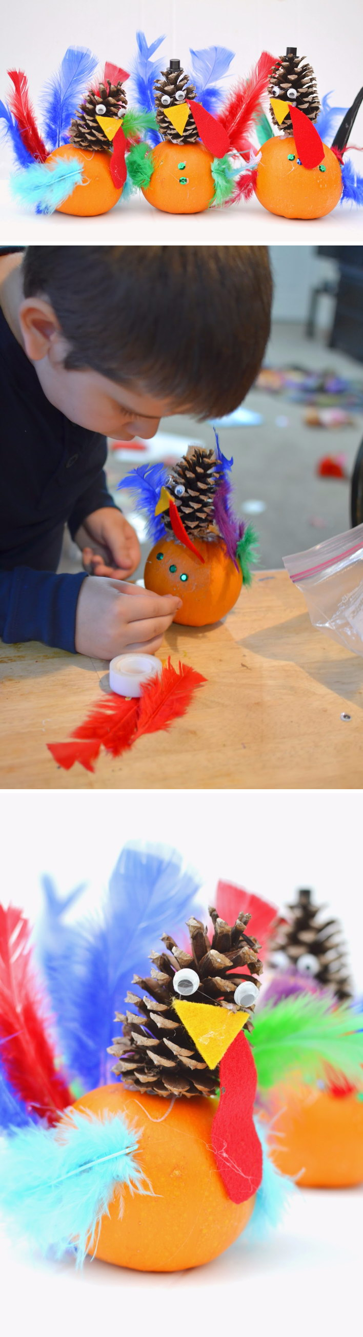DIY Pumpkin and Pine Cone Turkey Craft.