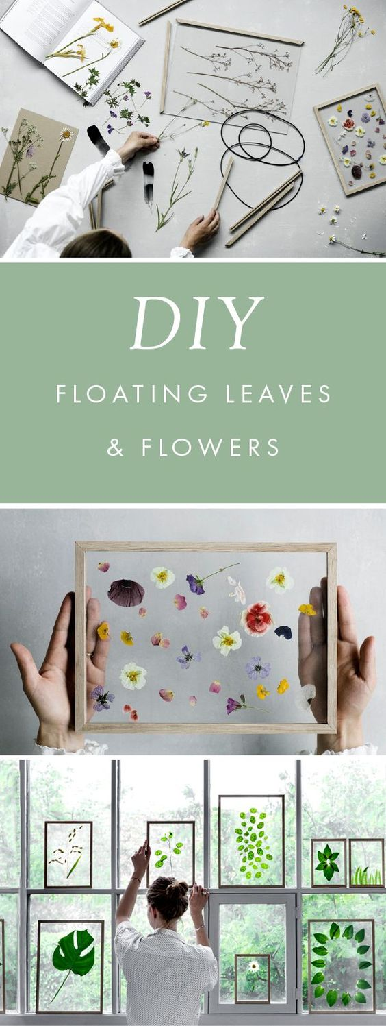 DIY Framed Floating Leaves & Flowers .