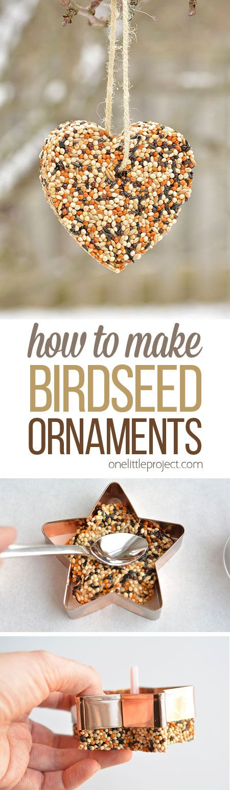 Birdseed Ornaments.