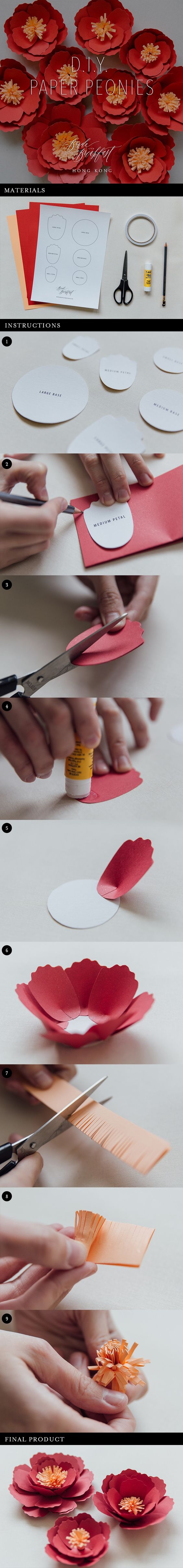 DIY Paper Peonies.