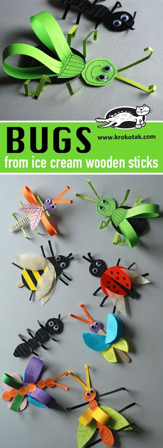 Bugs From Ice Cream Wooden Sticks.