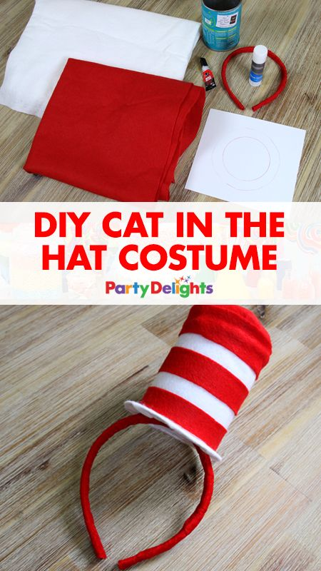 DIY Cat In The Hat Costume & 50+ Last Minute Costumes for Halloween